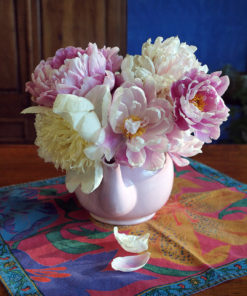Peonies and Teapot - photograph by Gail Russell